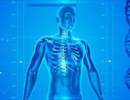 O que é tuberculose? Conheça mais sobre essa doença grave | PneumoCenter